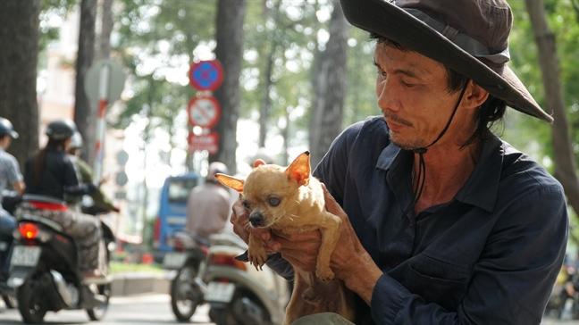 Nguoi dan ong ngheo 10 nam rong ruoi cung bay cho tren xe