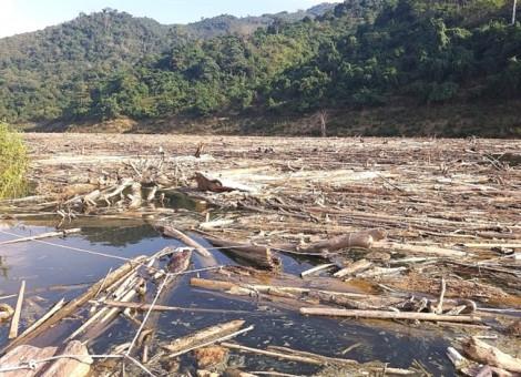 Người dân liều mình vớt gỗ ở thượng nguồn thủy điện Bản Vẽ