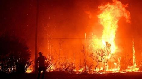 Cháy rừng dữ dội lan đến ngoại ô Sydney