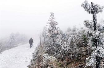 Miền Bắc rét đậm kéo dài, nhiều nơi bị phủ trắng bởi sương muối