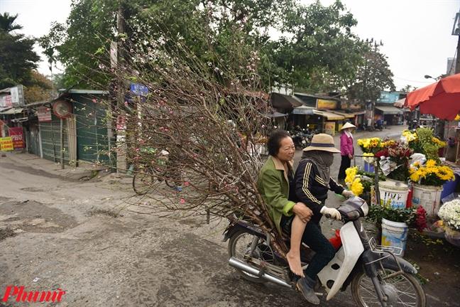 Tet Canh Ty den gan, dao Nhat Tan dua nhau xuong pho khoe sac