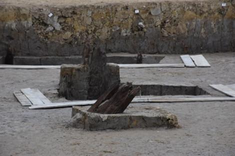 Cánh đồng chứa cọc cổ ở Hải Phòng từng là lòng sông