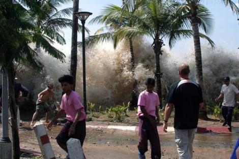 15 năm sau trận động đất, sóng thần: Nỗi đau còn đó nhưng cuộc sống vẫn sinh sôi