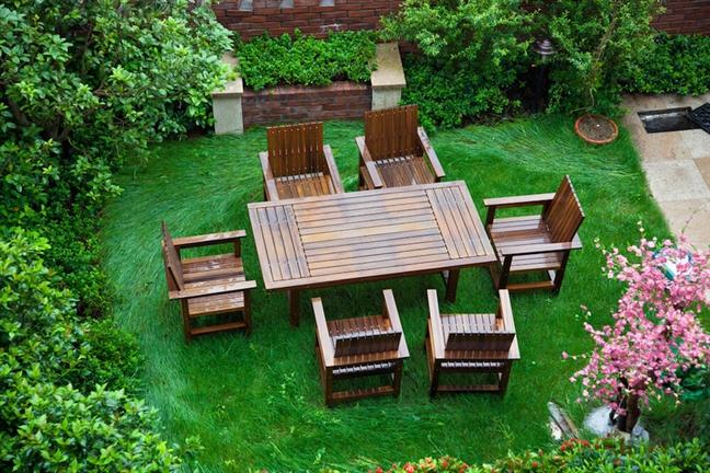 Bãi cỏ có thể đa chức năng. Ảnh: Rodho / Shutterstock.