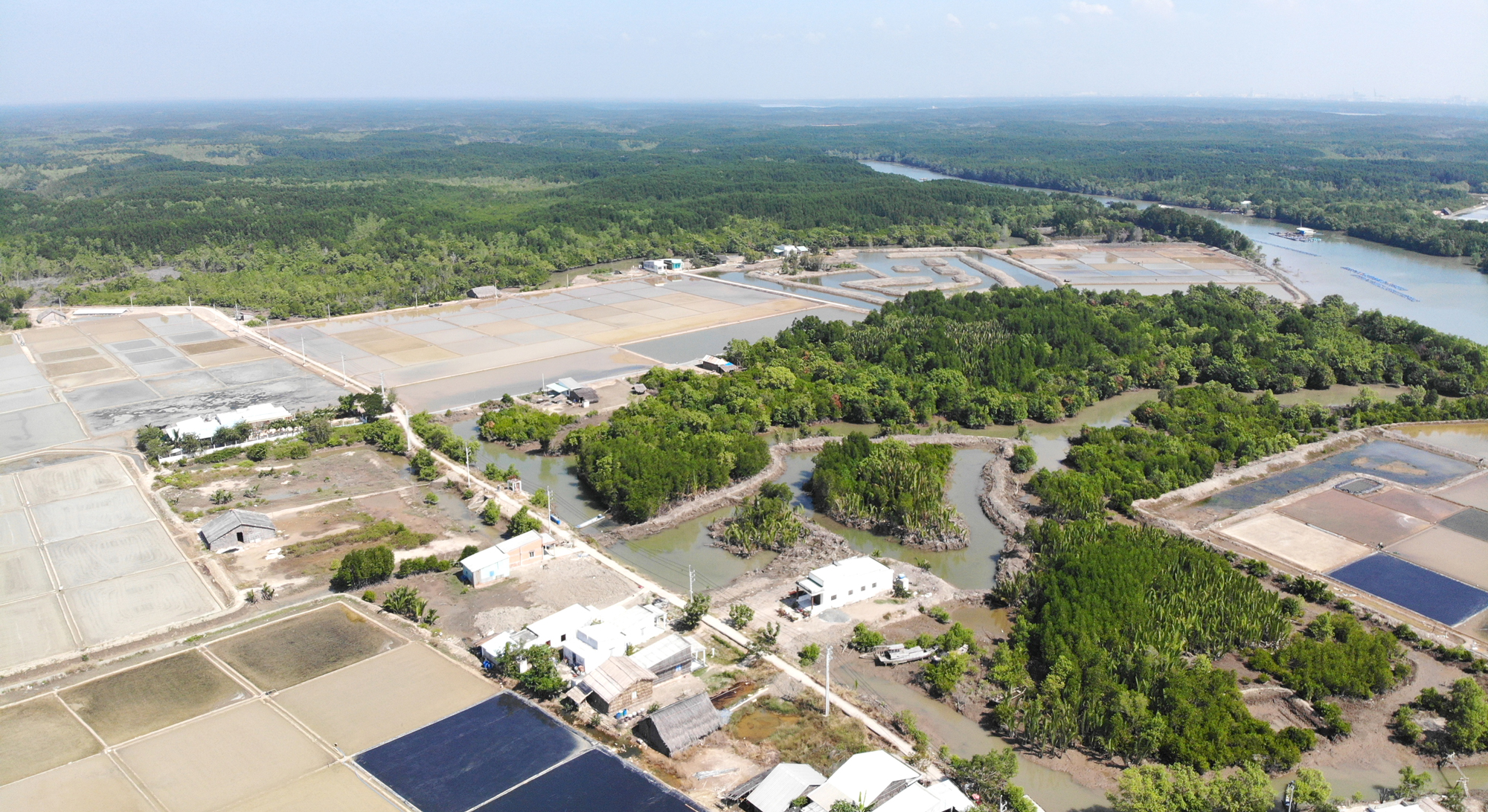 Tại ấp Thiềng Liềng, đã xảy ra cơn sốt đất sau đợt kiểm kê rừng; hiện phải mua với giá hơn 2 tỷ đồng/ha đất, người dân mới bán