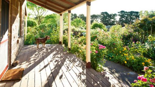 Cách thiết kế sân vườn rộn ràng tiếng chim hót