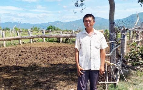 Một nông dân bị truy tố vì dựng chòi chăn cừu trên đất mua 'giấy tay'