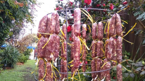 'Tao ăn tết Việt'