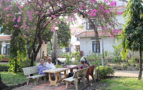 Viện dưỡng lão ngày cuối năm: Hỏi Xuân có về?