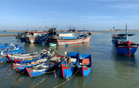 Tết Phú Yên: Những rộn rã yên bình