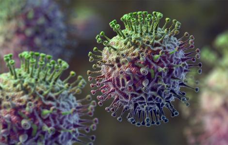Người Mỹ căng mình đối phó trên hai mặt trận: cúm và coronavirus