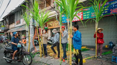 Người Sài Gòn chen chân mua mía cúng vía Trời mùng 9 tháng Giêng