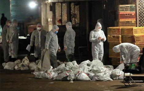 Giữa 'bão' corona, Việt Nam lên kế hoạch chống dịch mới