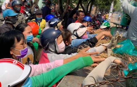 15 tấn dưa hấu được 'giải cứu' trong 3 tiếng