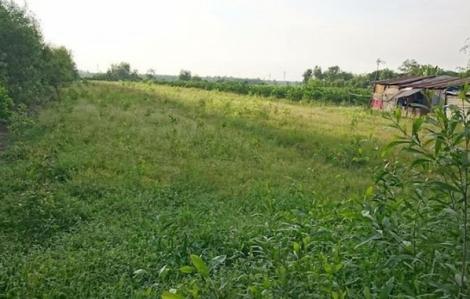 TPHCM Xin chuyển đổi gần 400 ha đất nông nghiệp ở huyện Hóc Môn sang đất ở đô thị