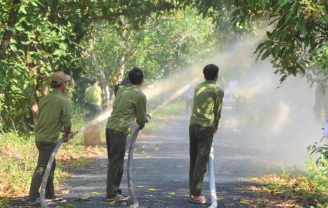 Vườn Quốc gia U Minh Hạ có nguy cơ cháy