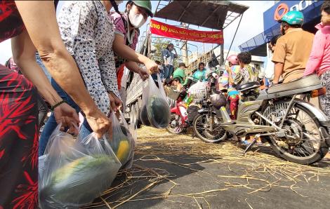 Những hình ảnh đẹp tại một điểm giải cứu dưa hấu ở Sài Gòn