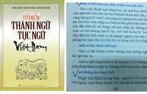 Thu hồi, tiêu hủy 'Từ điển thành ngữ tục ngữ Việt Nam'