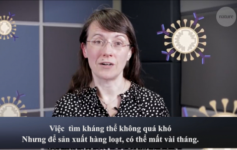 Các nhà khoa học đang chiến đấu với COVID-19 như thế nào?
