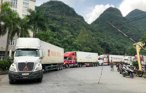Hàng ngàn xe nông sản đang tồn ở cửa khẩu do không có hợp đồng mua bán
