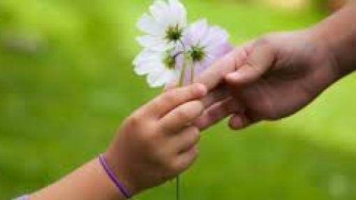 Xin giúp hai bé nghèo chữa bệnh ung thư