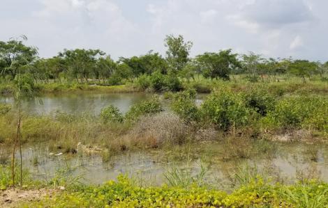 15 năm ký hợp đồng mua nền dự án chỉ nhận được bãi đất trống