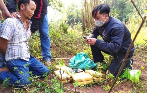 Bắt đối tượng vận chuyển hơn 60.000 viên ma túy tổng hợp tại biên giới Việt - Lào