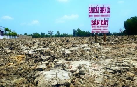 Cạo bán đất ruộng: lợi cạn, hại sâu