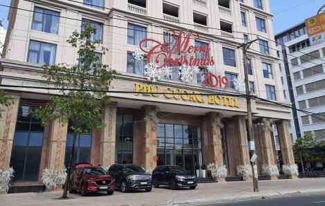 Khách sạn tự ý chặt cây xanh bị xử lý vẫn không nộp phạt