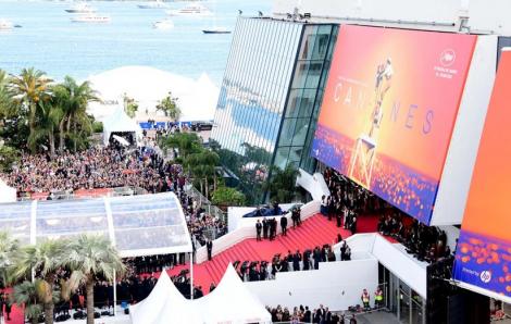 Huỷ tổ chức Liên hoan phim Cannes
