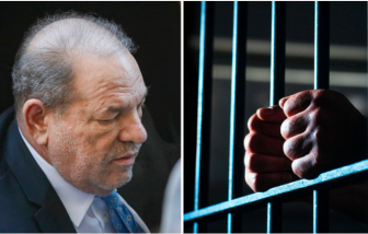 """""""Yêu râu xanh Hollywood"""" Harvey Weinstein mắc COVID-19 trong tù, nhiều sao thông báo nhiễm bệnh"""
