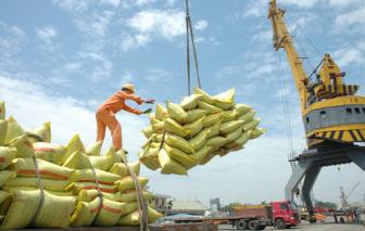 Thủ tướng yêu cầu ngưng ký mới các hợp đồng xuất khẩu gạo