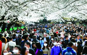 Người Nhật tự thích nghi trong dịch bệnh
