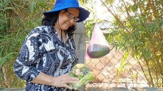 Bà ngoại U70 cách ly con cháu, sống một mình giữa nhà vườn