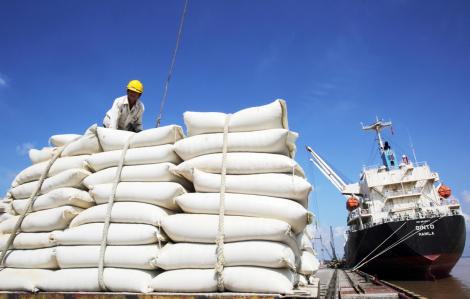 Bộ Công thương giữ nguyên đề xuất tiếp tục xuất khẩu gạo