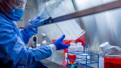 Việt Nam nghiên cứu huyết tương của bệnh nhân khỏi bệnh COVID-19 để chữa cho các ca nặng