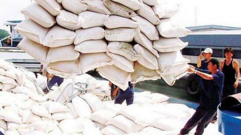 Thủ tướng đồng ý cho xuất gạo trở lại