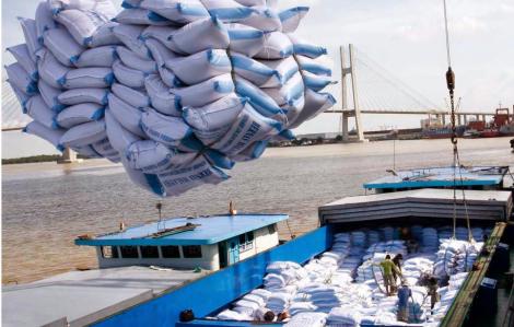 Phó Thủ tướng yêu cầu làm rõ vụ mở tờ khai xuất khẩu gạo lúc nửa đêm
