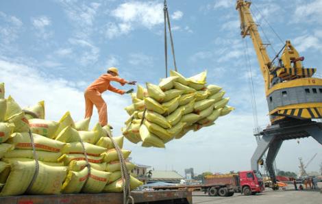 """Nhiều doanh nghiệp xuất khẩu gạo """"trốn"""" mua gạo dự trữ quốc gia"""
