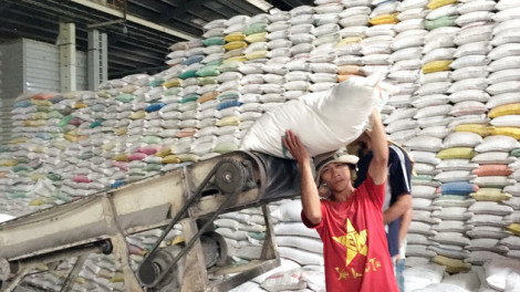 Thủ tướng giao Thanh tra Chính phủ làm rõ dấu hiệu tiêu cực trong việc xuất khẩu gạo