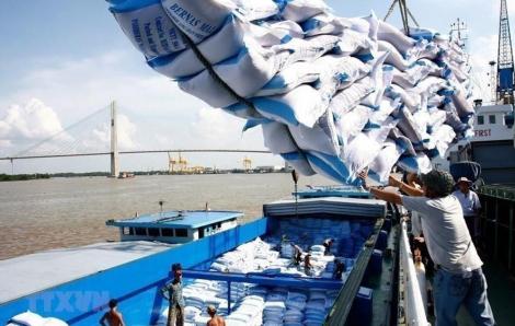 Miền Tây ùn ứ gạo, đồng loạt xin được xuất khẩu