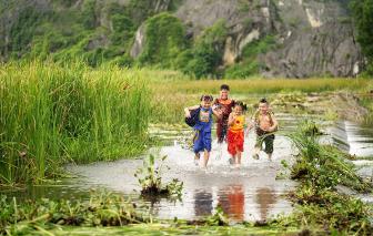 Phim Việt chiếu hè 2020 mất hút vì COVID-19