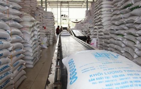 Giá gạo giảm sau quyết định được xuất khẩu trở lại