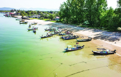 Châu Á có cơ hội cải tạo nguồn lợi biển sau đại dịch