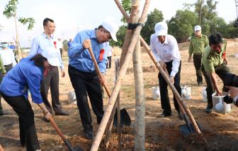 Một triệu cây xanh sẽ được trồng khắp TPHCM trong năm 2020