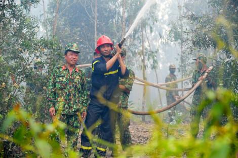 Cháy rụi 40 héc-ta rừng tràm