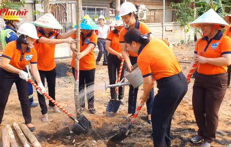 Trồng cây, vệ sinh đường phố mừng sinh nhật Bác