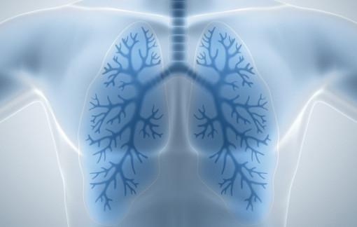 Còn 1 lá phổi có sống được không?