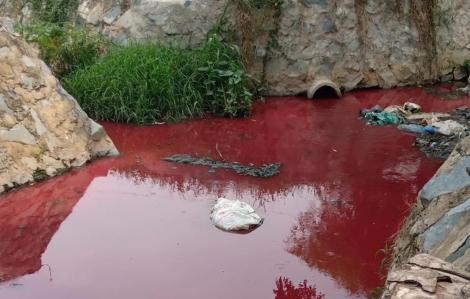 Xác định nguyên nhân ban đầu khiến con suối ở Bình Dương nhuốm màu đỏ tươi
