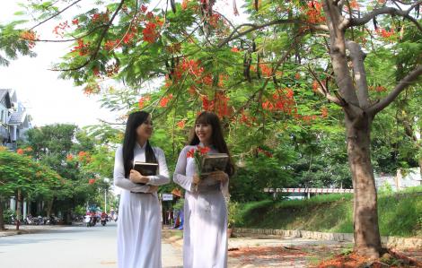 Nơi rợp màu phượng đỏ ở Sài Gòn